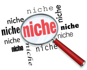 Actionate Review: What Niches Does Actionate Offer?
