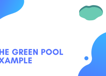 The Green Pool Example: Why Search traffic is the best traffic