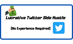 Lucrative Side Hustle - No experience required